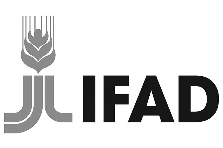 logotipo ifad