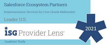 salesforce ecosystem partner