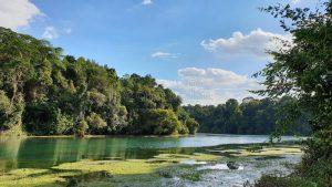 rio selvatico